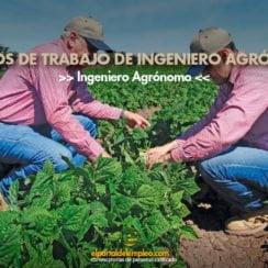 trabajo-de-ingeniero-agronomo